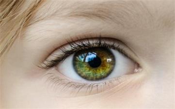 角膜眼表疾病科