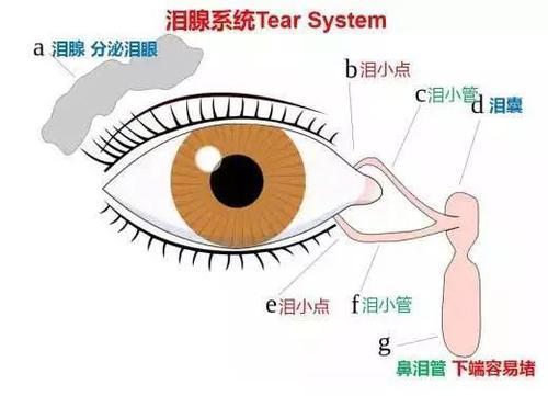 泪道探通是什么手术?
